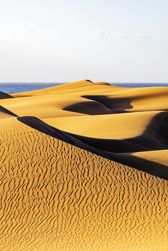 Europe, Spain, Canary Islands, Gran Canaria, Nature Reserve Dunes of Maspalomas - 733-8451
