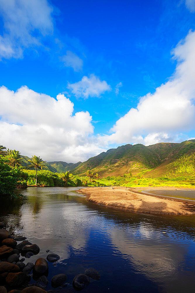 United States of America, Hawaii, Molokai island, Halawa valley - 733-8978