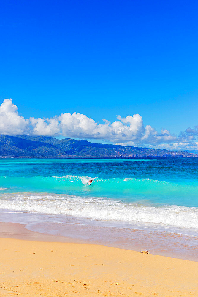 Body boarder, Baldwin Beach, Maui Island, Hawaii, United States of America, North America
