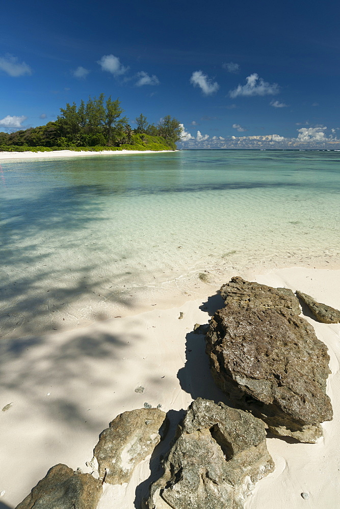Denis Island, Seychelles, Indian Ocean, Africa