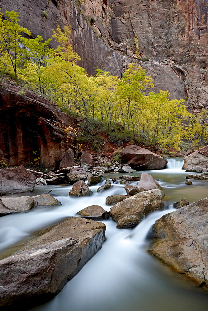 Cascades on the Virgin River in the fall, Zion National Park, Utah, United States of America, North America