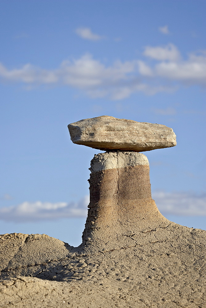 Hoodoo, Bisti Wilderness, New Mexico, United States of America, North America
