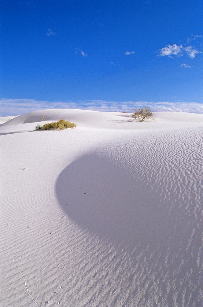 White sand dune, White Sands National Monument, New Mexico, United States of America, North America