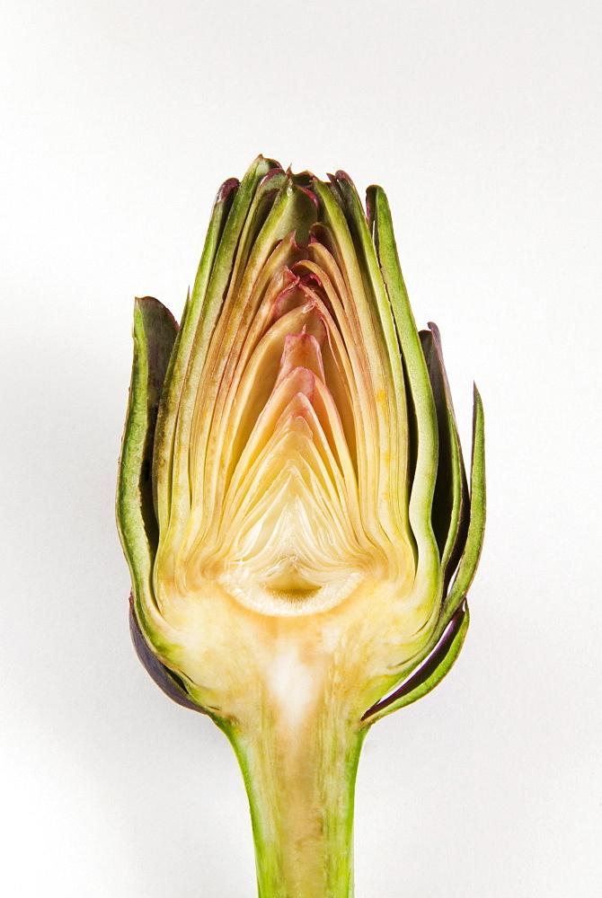 Half artichoke, Italy, Europe - 765-1434