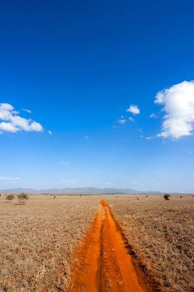 Trail in the Savannah, Tsavo West National Park, Kenya, East Africa