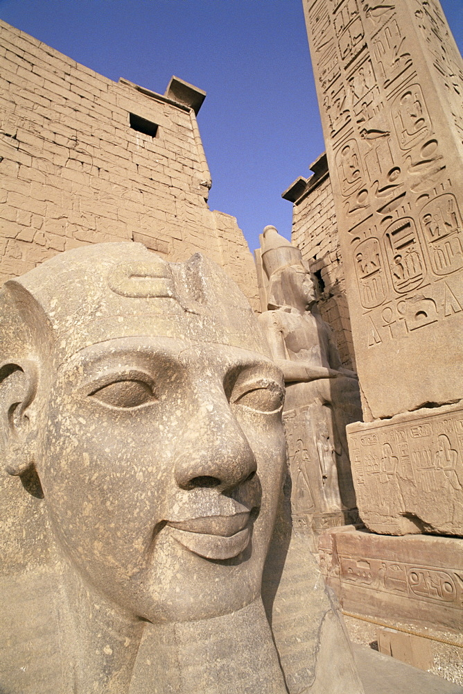 Statue of the pharaoh Ramses II, Luxor Temple, Thebes, UNESCO World Heritage Site, Egypt, North Africa, Africa - 765-73