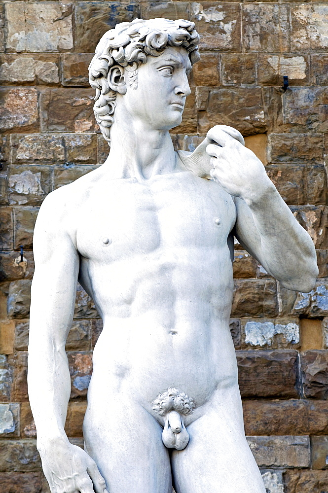 The David, Piazza della Signoria, Florence (Firenze), UNESCO World Heritage Site, Tuscany, Italy, Europe - 765-868