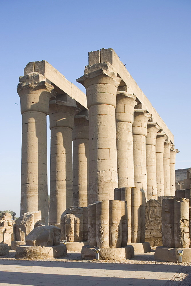 Colonnade, Luxor Temple, Luxor, Thebes, UNESCO World Heritage site, Egypt, North Africa, Africa - 783-33