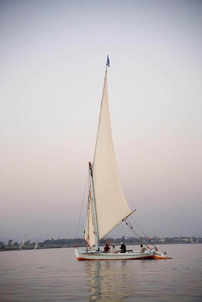 Felucca, River Nile, Egypt, North Africa, Africa - 783-34