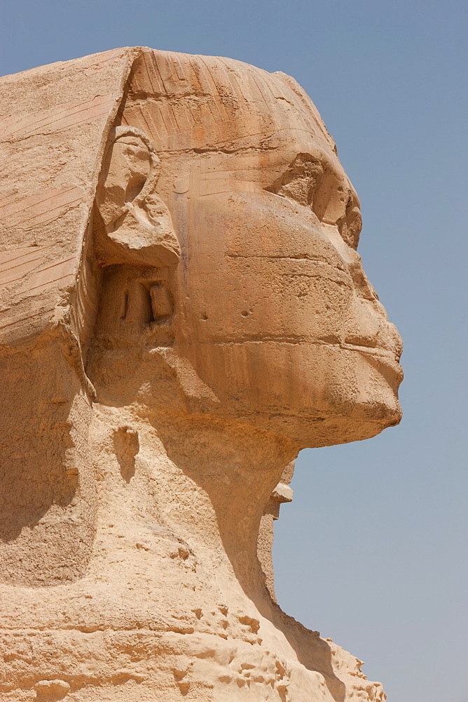 Detail of the eroded face of the Sphinx in Giza, UNESCO World Heritage Site, near Cairo, Egypt, North Africa, Africa
