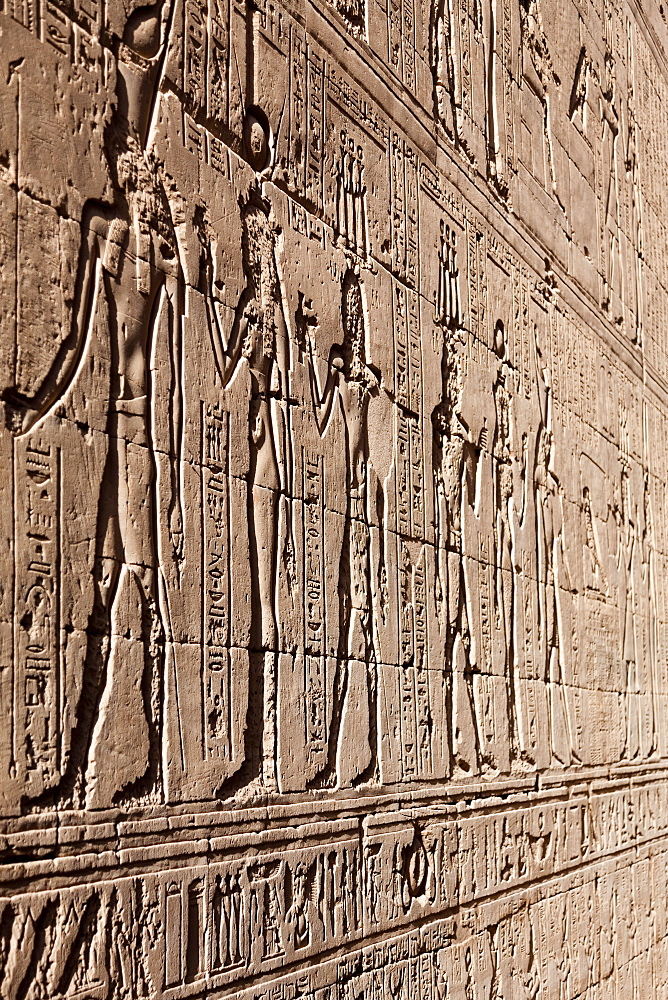 Relief carving in the ancient Egyptian Temple of Edfu, Egypt, North Africa, Africa