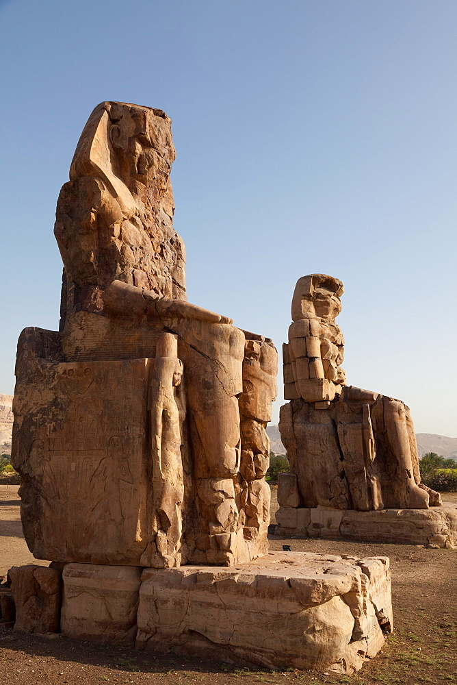 The ancient Colossi of Memnon near Luxor, Thebes, UNESCO World Heritage Site, Egypt, North Africa, Africa