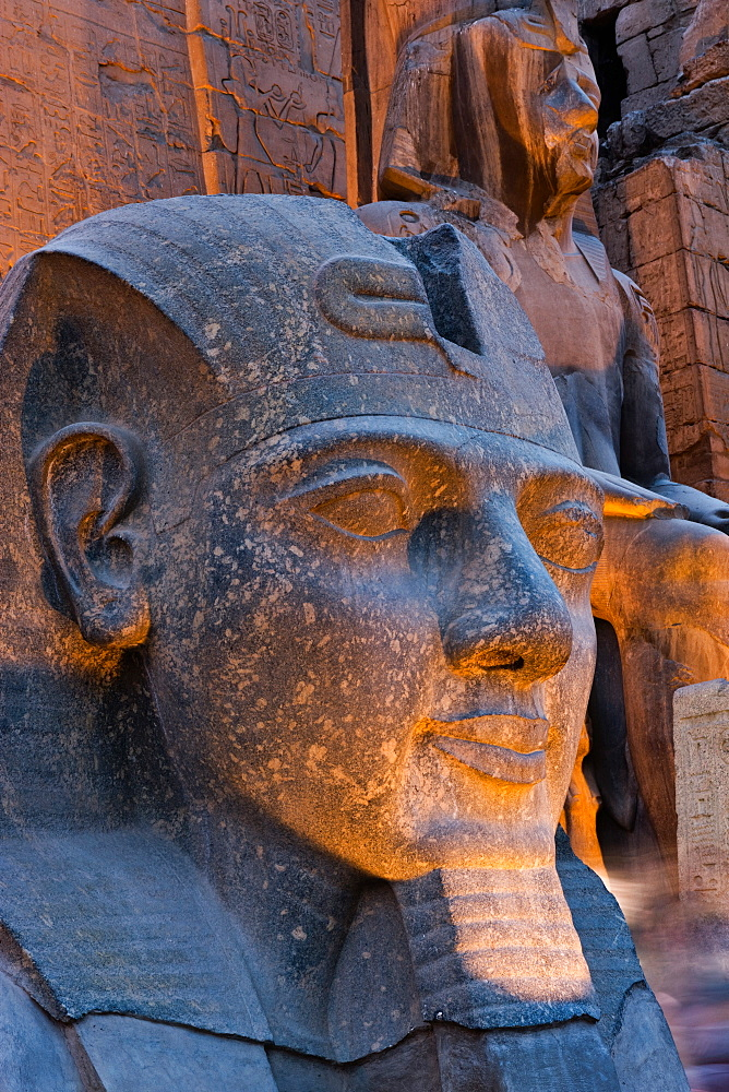 Statue in the ancient Egyptian Luxor Temple at night, Luxor, Thebes, UNESCO World Heritage Site, Egypt, North Africa, Africa - 785-1920