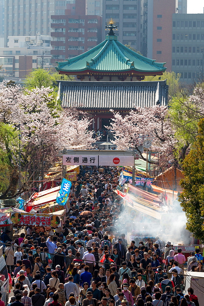 Crowds enjoying the food stalls at Ueno Park, Tokyo, Japan, Asia