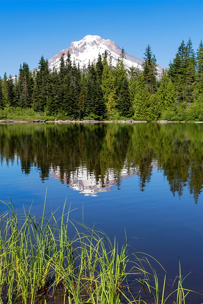 Mount Hood, part of the Cascade Range, reflected in the still waters of Mirror Lake, Pacific Northwest region, Oregon, United States of America, North America