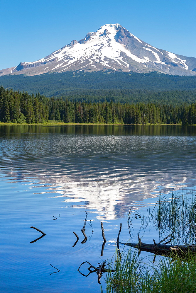Mount Hood, part of the Cascade Range, perfectly reflected in the still waters of Trillium Lake, Oregon, United States of America, North America