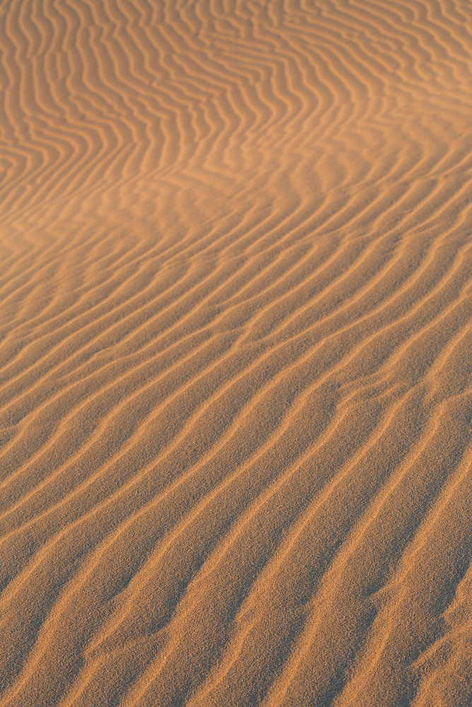 Sand textures on the dramatic Dunas de Corralejo in evening light on the volcanic island of Fuerteventura, Canary Islands, Spain, Europe - 785-2283