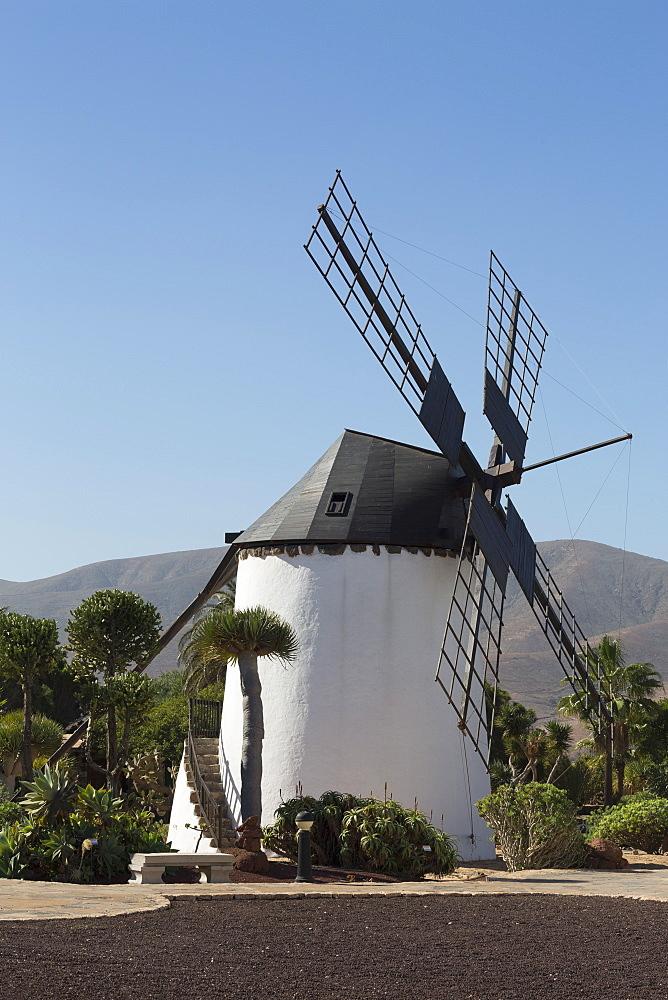 Windmill at the Museo del Queso Majorero near Antigua in Fuerteventura, Canary Islands, Spain, Atlantic, Europe - 785-2298