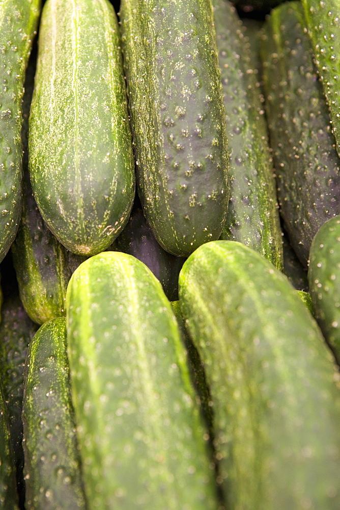 Cucumbers for sale, Mercado Central (Central Market), Valencia, Mediterranean, Costa del Azahar, Spain, Europe