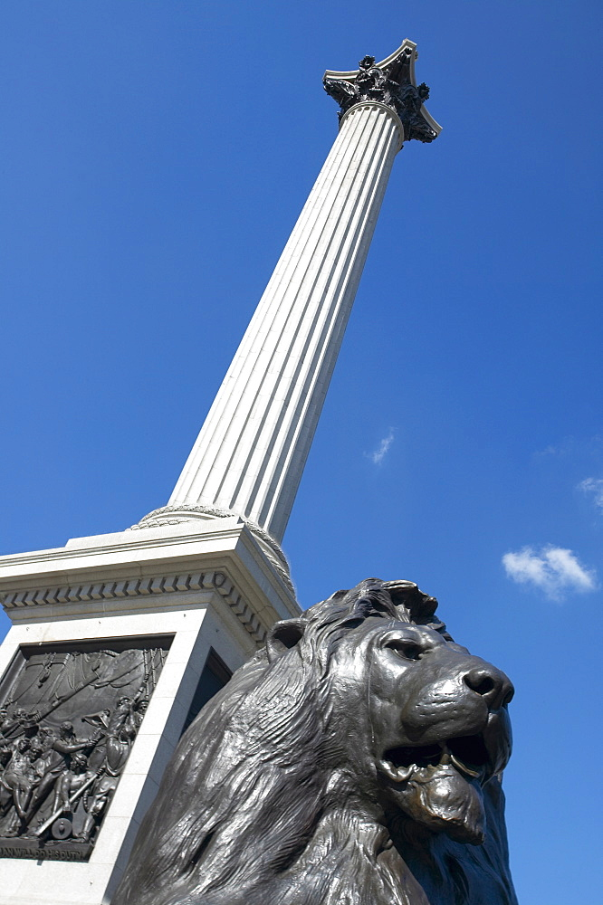 Nelson's Column, Trafalgar Square, London, England, United Kingdom, Europe - 790-37
