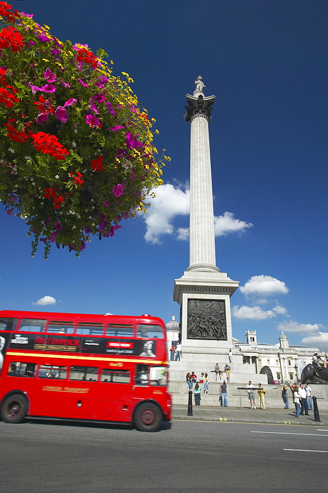 Routemaster bus passing Nelson's Column, Trafalgar Square, London, England, United Kingdom, Europe - 790-38