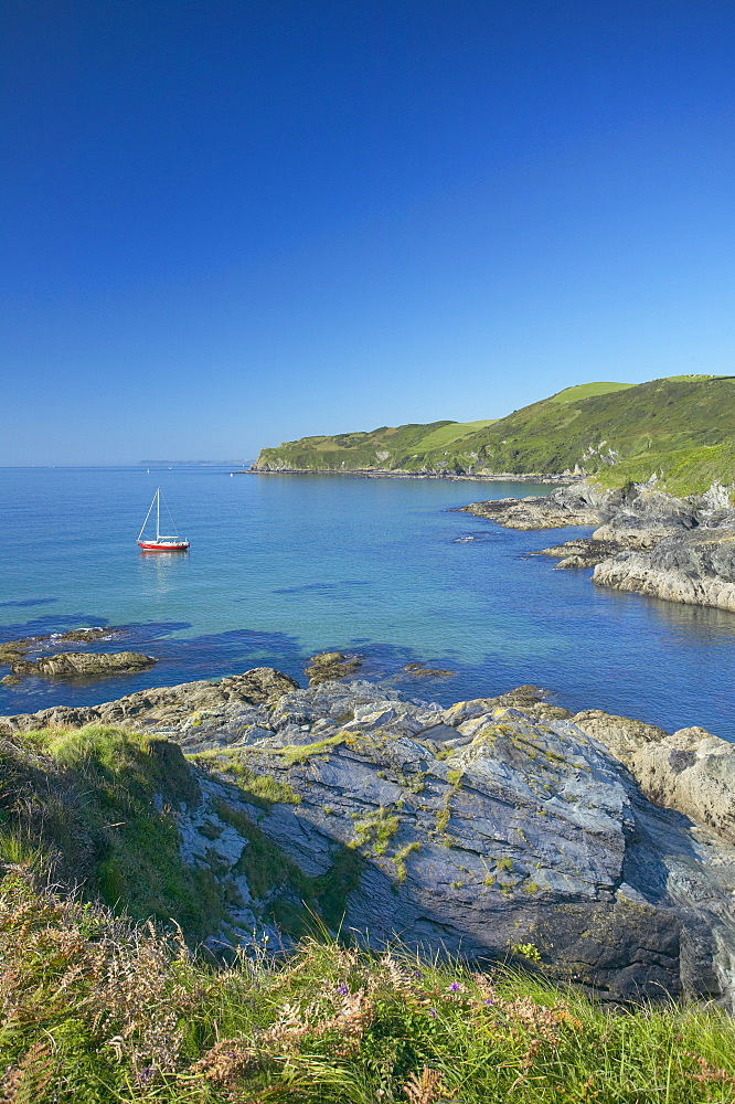 Lantivet Bay, Cornwall, England, United Kingdom, Europe - 790-6