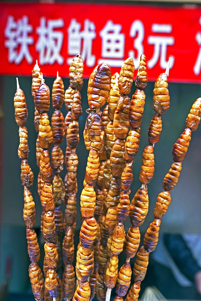 Larvae on skewers for sale at Dong Hua Men night market, Beijing, China, Asia