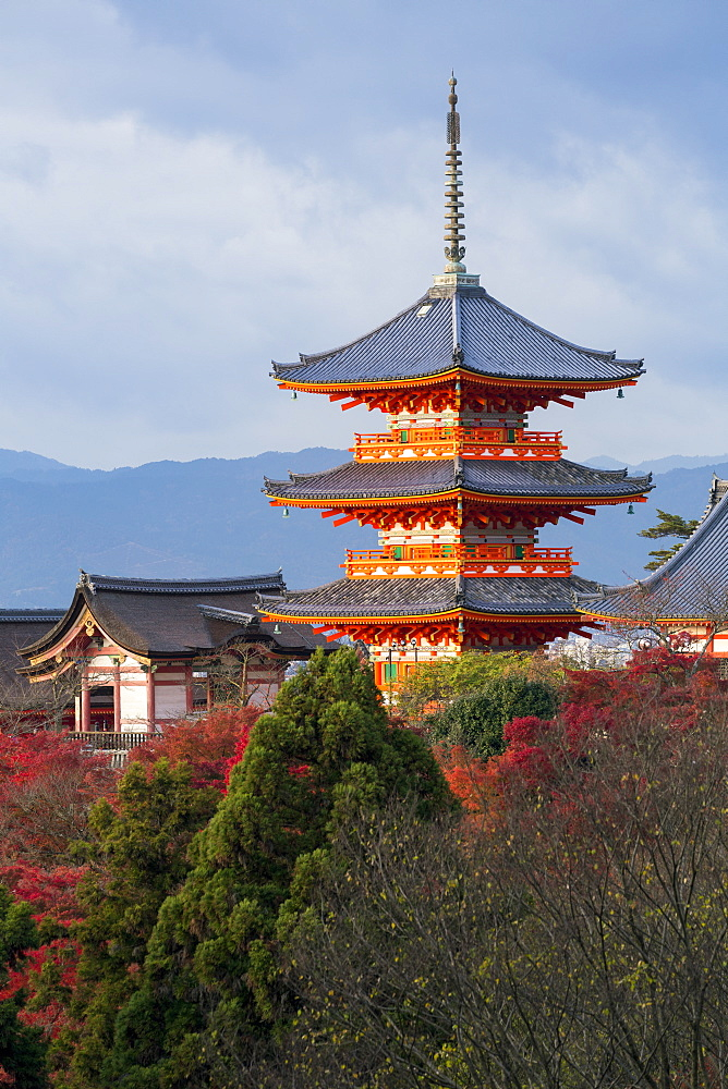 Japan, Honshu, Kyoto, Kiyomizu-dera temple, classified as World Heritage by UNESCO - 794-4491