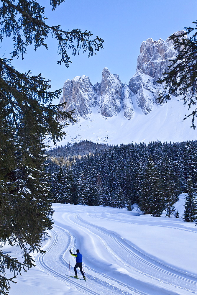 Man cross-country skiing, Puez Odle National Park, Dolomites, South Tirol, Trentino-Alto Adige, Italy, Europe