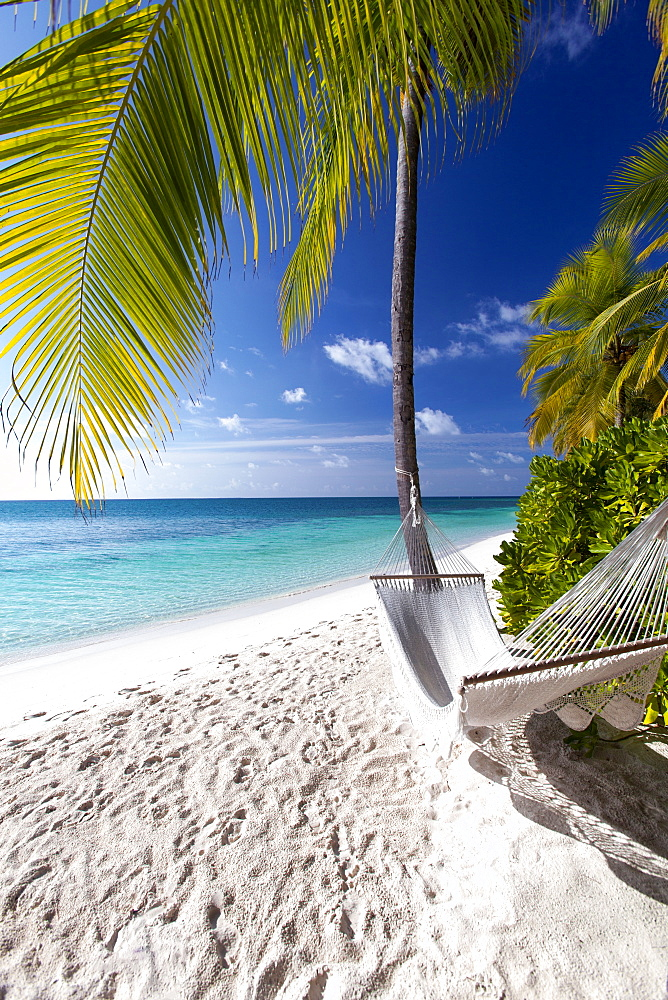 Hammock on tropical beach, Maldives, Indian Ocean, Asia - 795-529
