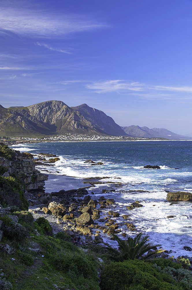 Hermanus, Western Cape, South Africa - 800-3231