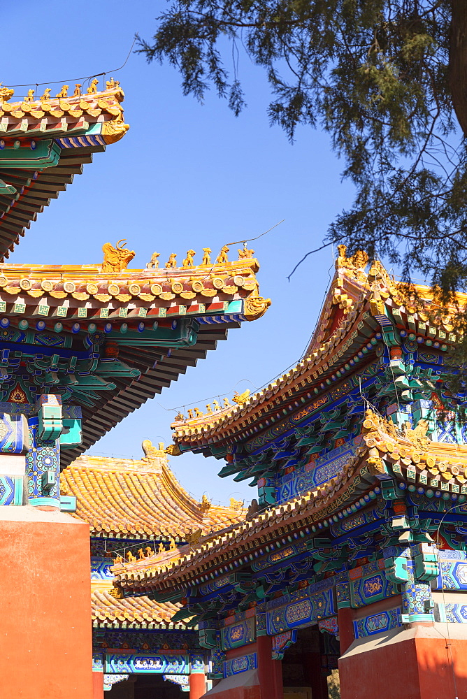 Confucius Temple, Beijing, China, Asia - 800-3912