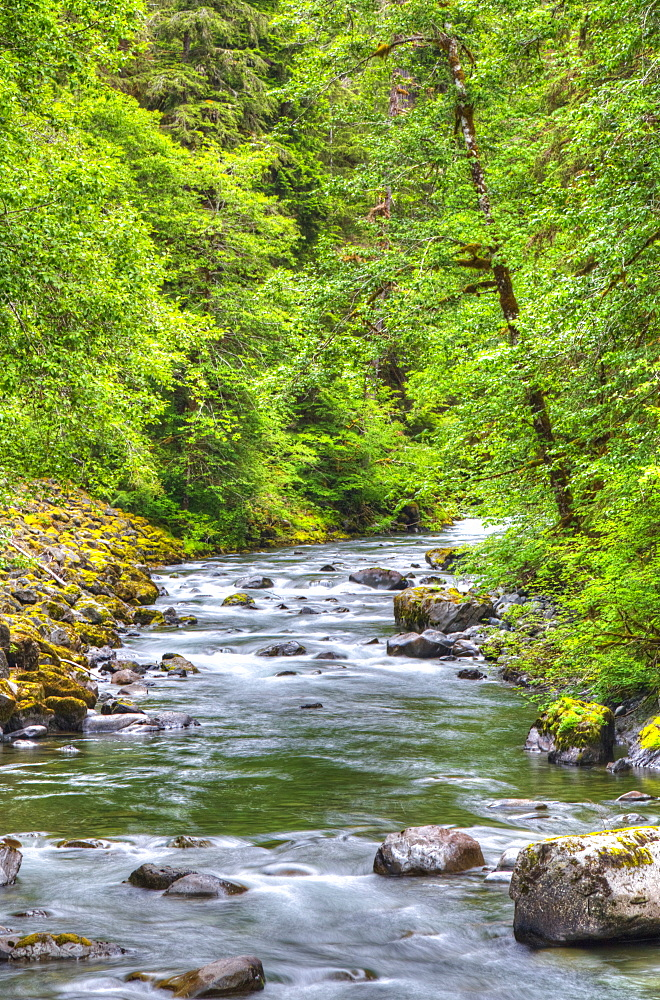 Sol Doc River, Olympic National Park, UNESCO World Heritage Site, Washington, United States of America, North America