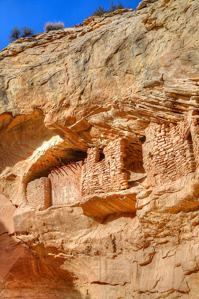 Target Ruins, Ancestral Pueblo, up to 1000 years old, Coomb Ridge area, Utah, United States of America, North America