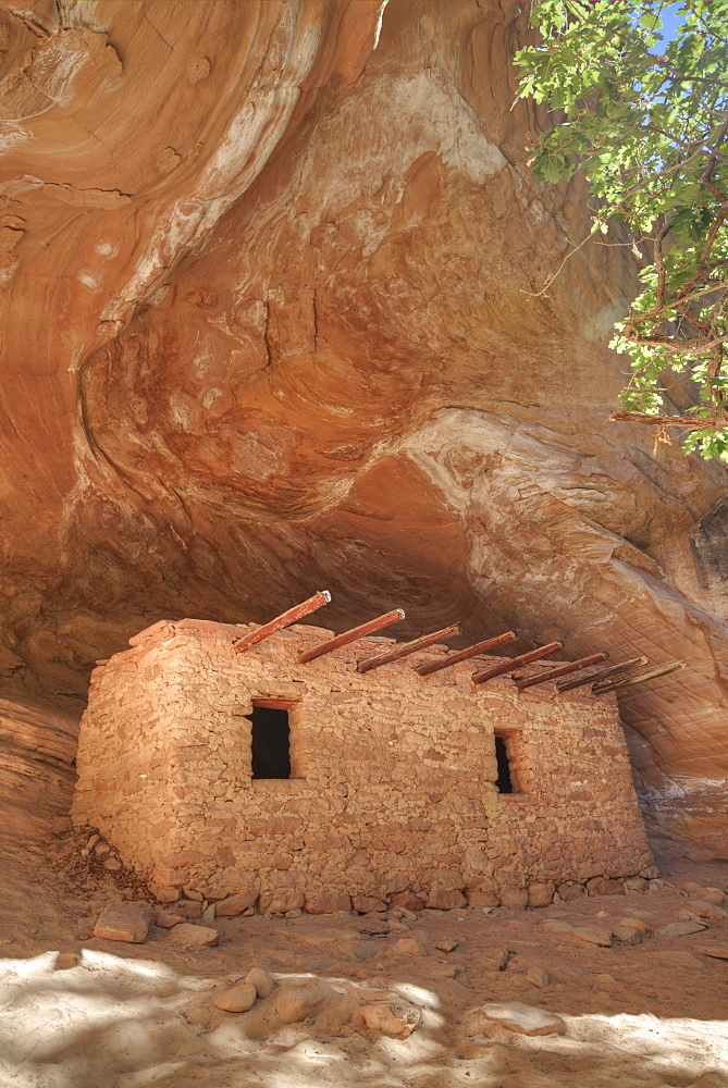 The Doll House, Ancestral (Anasazi) Pueblo building, 1150-1250 AD, Bears Ears National Monument, Cedar Mesa, Utah, United States of America, North America - 801-2428