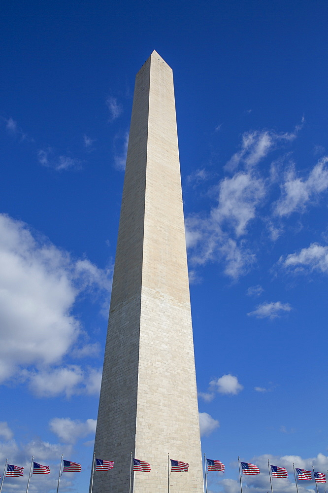 Washington Monument with American flags below, Washington D.C., United States of America, North America - 801-2463