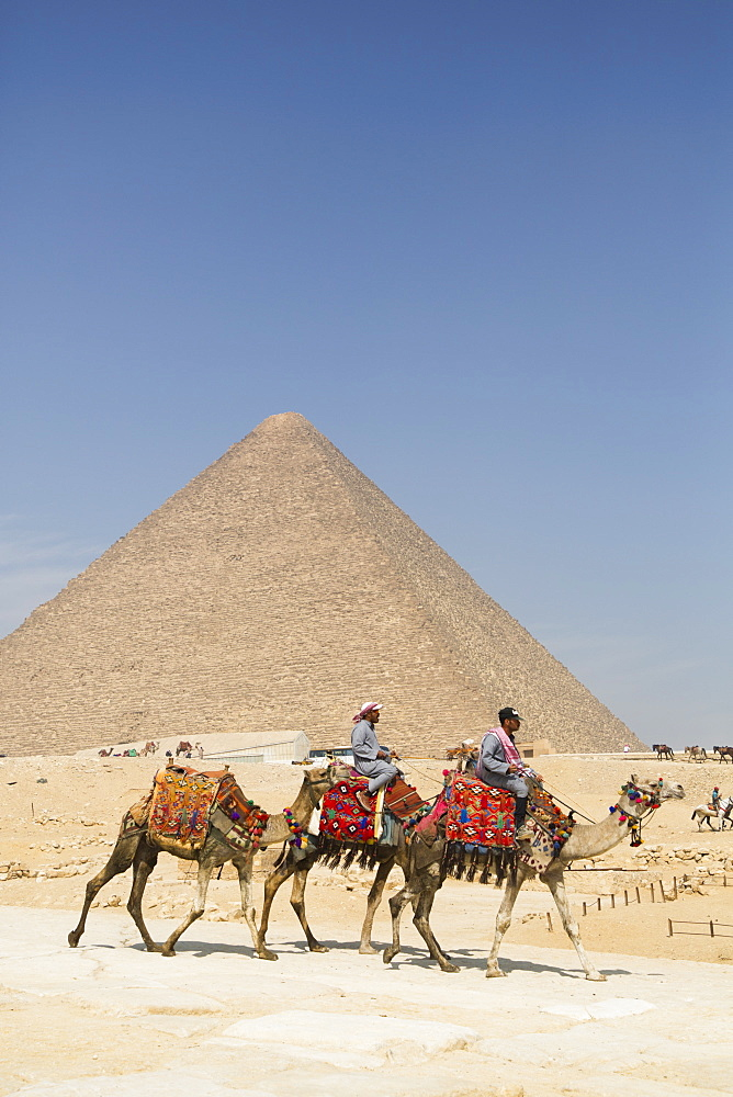Local men riding camels, Khufu Pyramid in the background, Great Pyramids of Giza, UNESCO World Heritage Site, Giza, Egypt, North Africa, Africa