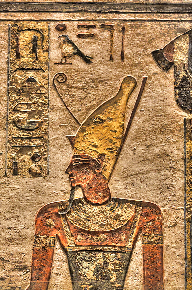 Relief of the Pharaoh, Tomb of Ramses III, KV11, Valley of the Kings, UNESCO World Heritage Site, Thebes, Luxor, Egypt, North Africa, Africa
