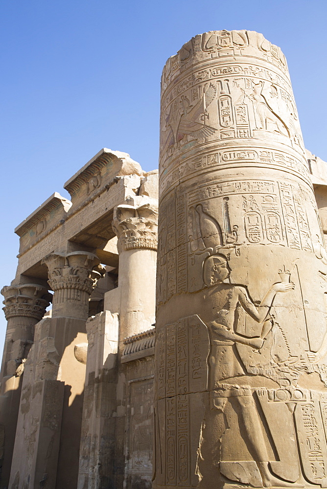 Column with Reliefs, Temple of Sobek and Haroeris, Kom Ombo, Egypt, North Africa, Africa - 801-2936