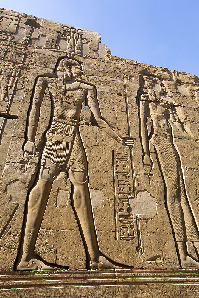 Wall Reliefs, Temple of Sobek and Haroeris, Kom Ombo, Egypt, North Africa, Africa
