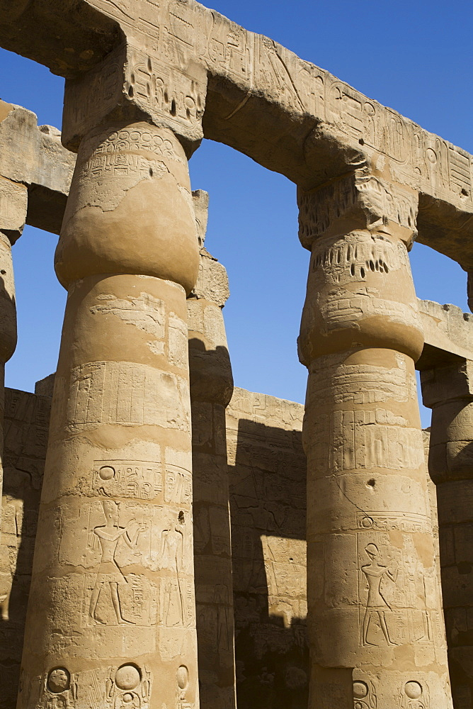 Columns in the Court of Ramses II, Luxor Temple, UNESCO World Heritage Site, Luxor, Thebes, Egypt, North Africa, Africa