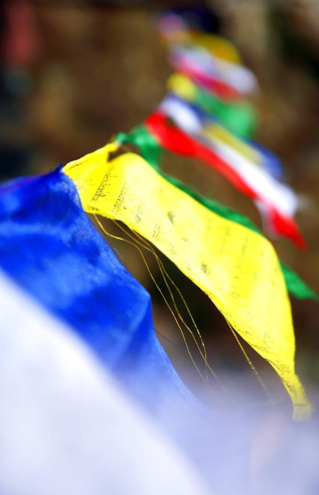 Buddhist prayer flags, Khumbu, Nepal, Asia - 802-419