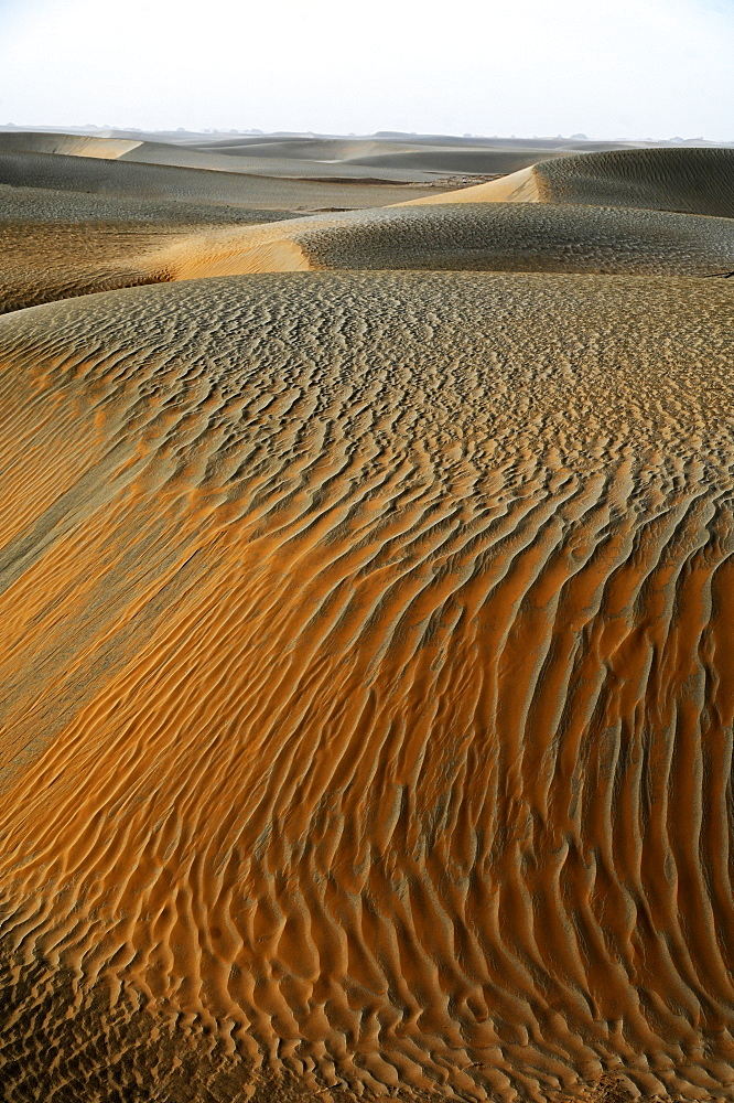 Wind blown sands in the Taklamakan desert, Hotan, Xinjiang Uyghur region, China, Asia