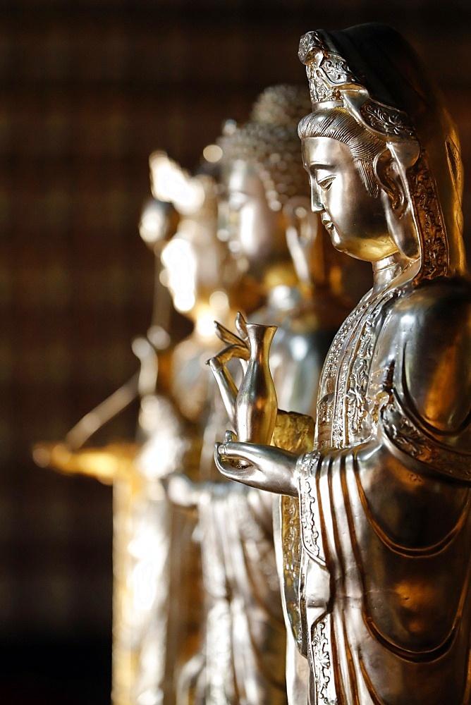 Khai Doan King Honored Pagoda, Quan Am (Guan Yin), the Bodhisattva of Compassion (Goddess of Mercy), Buon Me Thuot, Vietnam, Indochina, Southeast Asia, Asia - 809-8136
