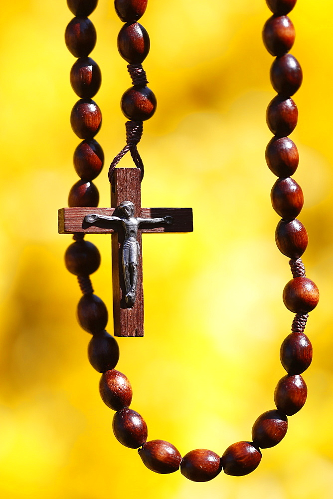 Wooden rosary against yellow broom flowers, France, Europe - 809-8147