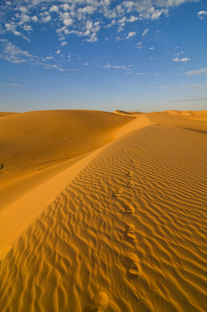 Footsteps in sand dunes at sunset, near Chinguetti, Mauritania, Africa