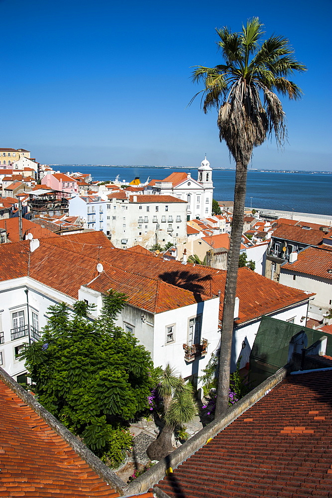 View from Portas do Sol over the old quarter of Alfama, Lisbon, Portugal, Europe
