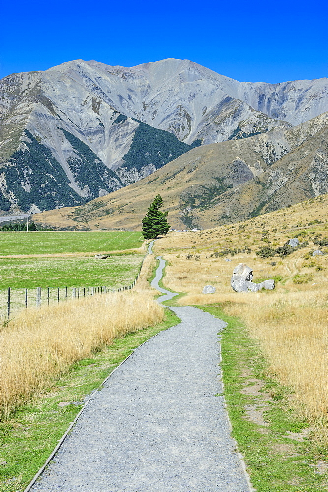 Footpath leading to Craigieburn Forest Park from Castle Hill, Canterbury, South Island, New Zealand, Pacific