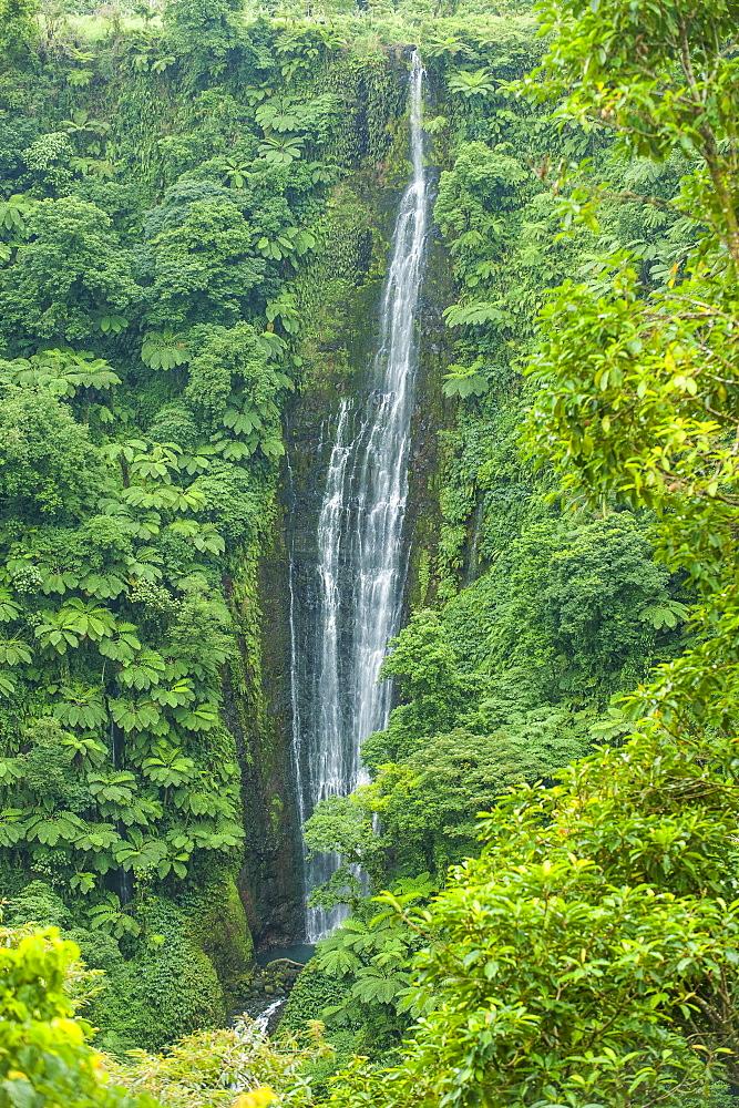 Papapapai-Tai Falls, Upolu, Samoa, South Pacific, Pacific