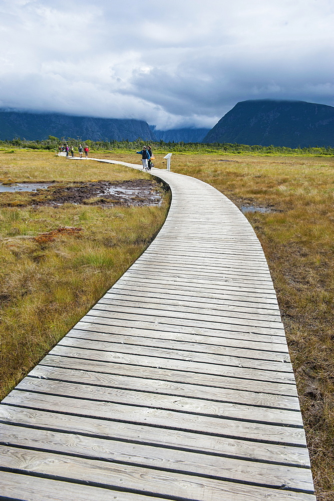 Walkway along Jerrys Pond in Gros Morne National Park, UNESCO World Heritage Site, Newfoundland, Canada, North America